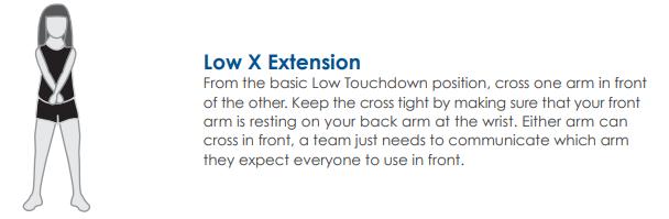 LowXExtension